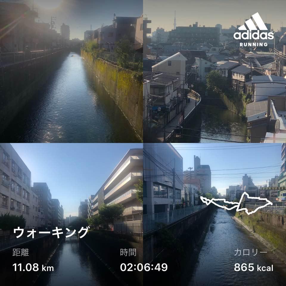 f:id:yasutaniwaki:20200622053022j:plain