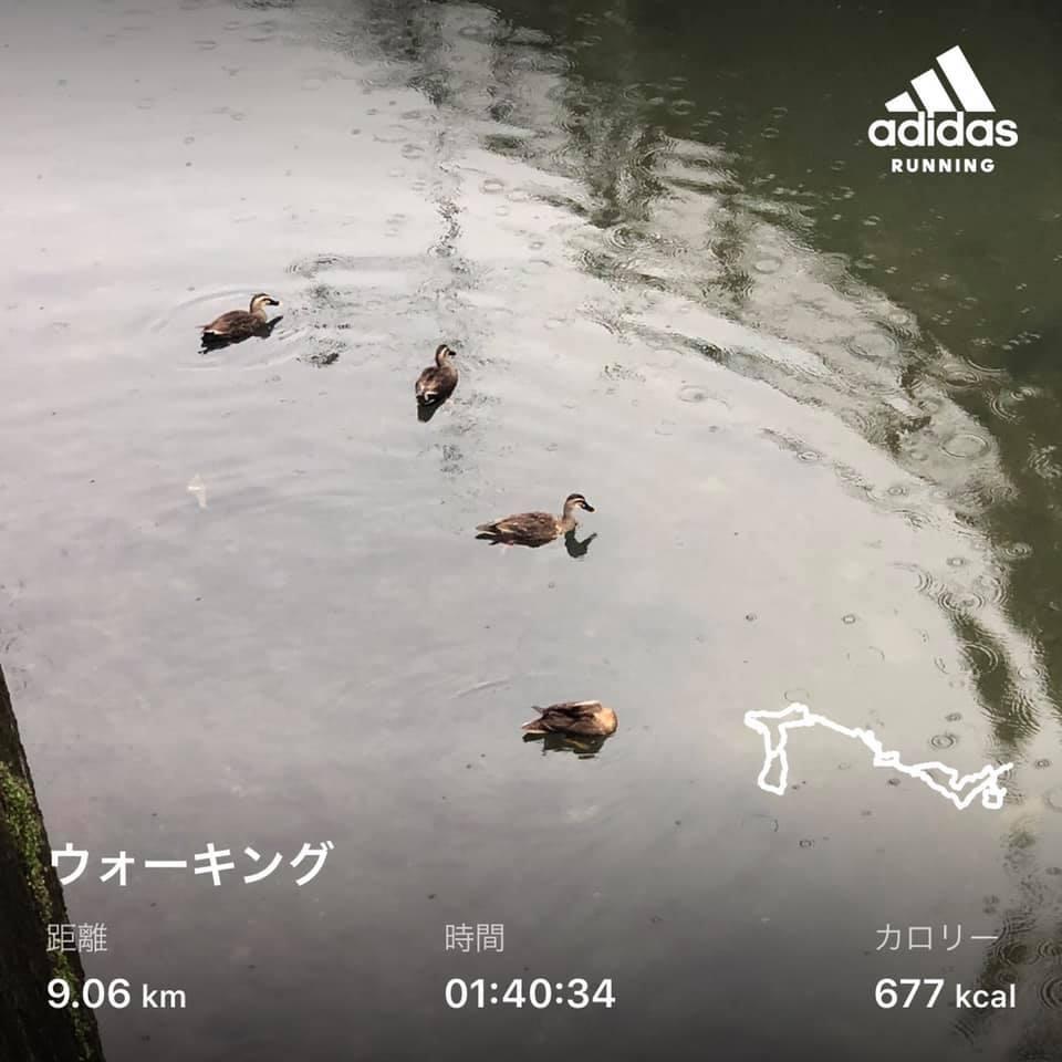 f:id:yasutaniwaki:20200724062214j:plain