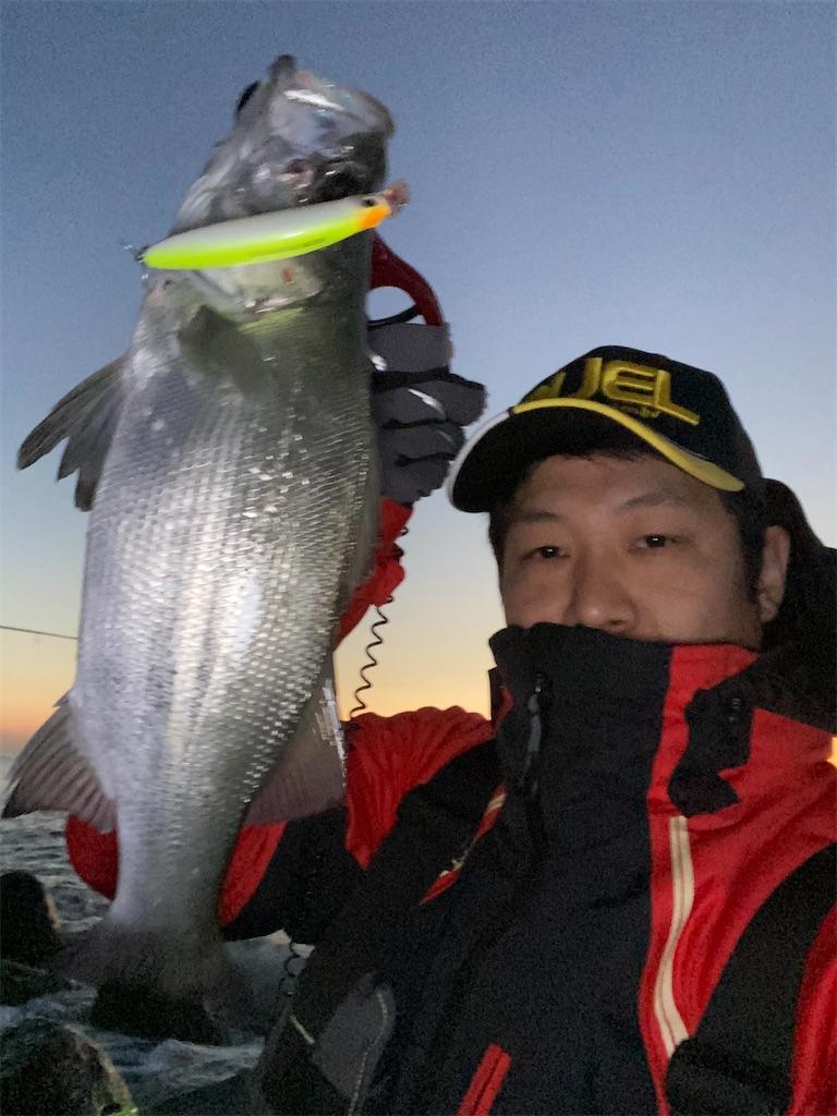 f:id:yasutsuchi2:20200224173441j:image