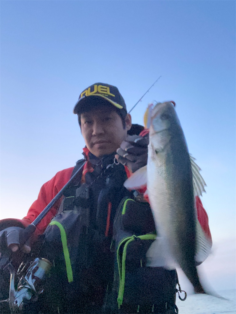 f:id:yasutsuchi2:20200323183952j:image
