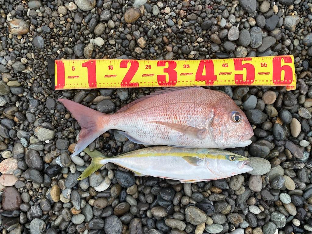 f:id:yasutsuchi2:20201107114034j:image