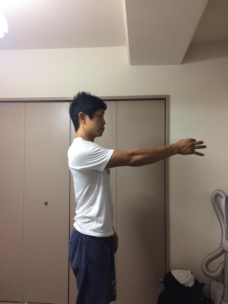 f:id:yasuyasi:20170629183248p:plain