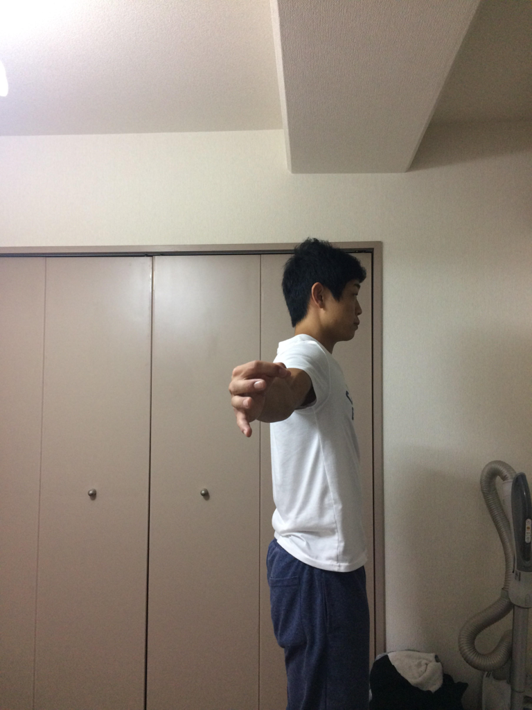 f:id:yasuyasi:20170629183442p:plain