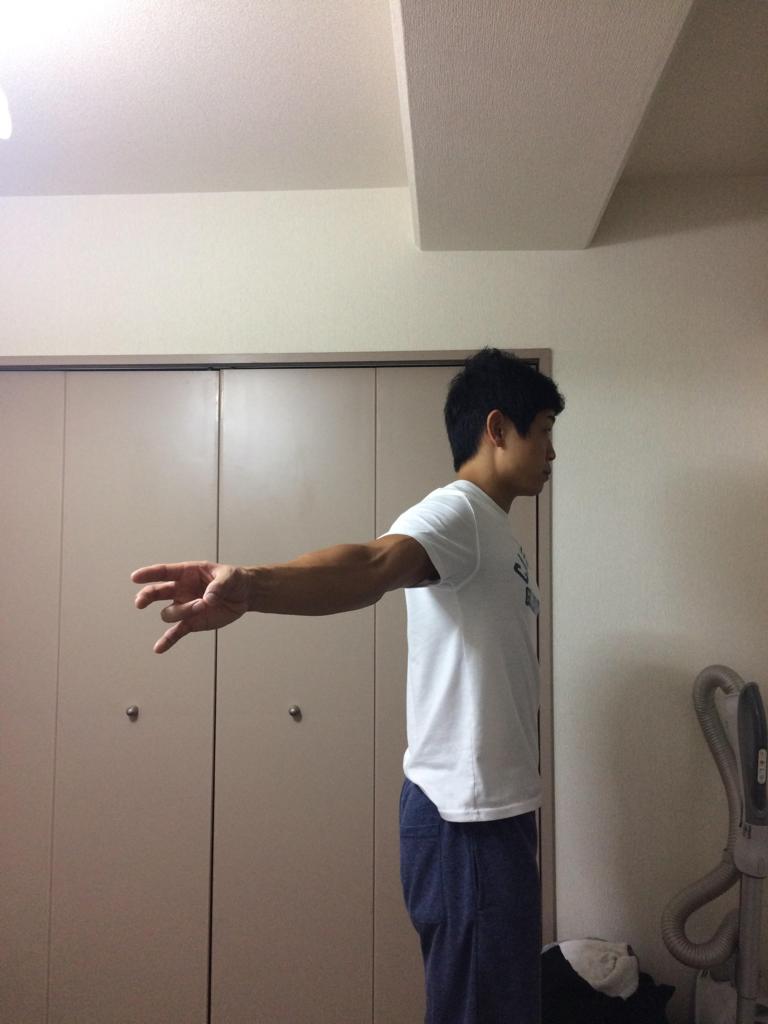 f:id:yasuyasi:20170629183644p:plain