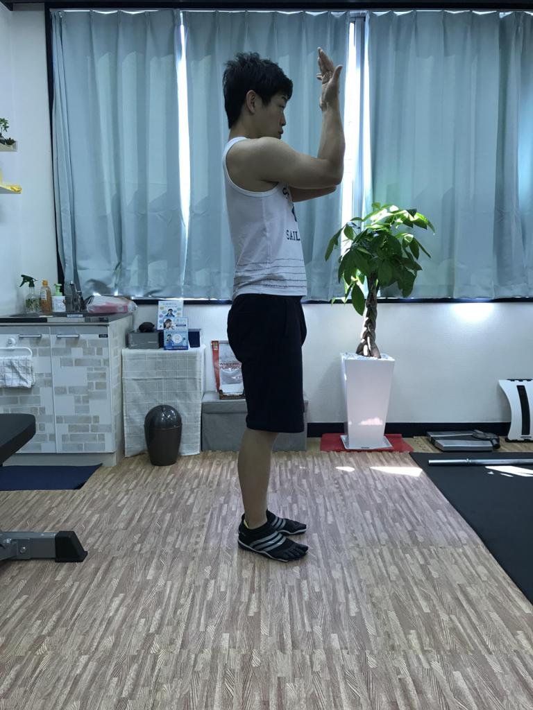 f:id:yasuyasi:20180601182147j:plain