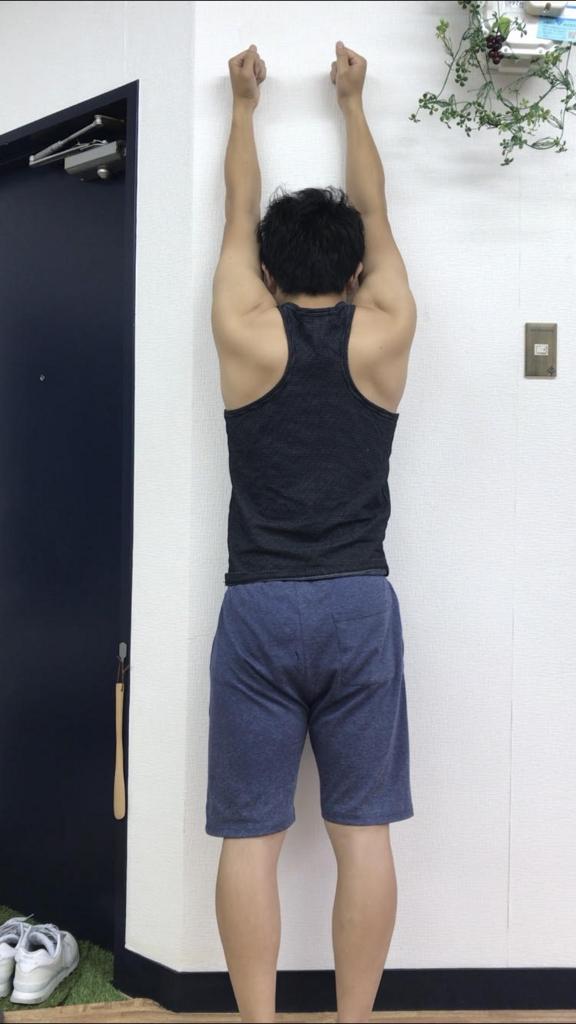 f:id:yasuyasi:20180609151529j:plain