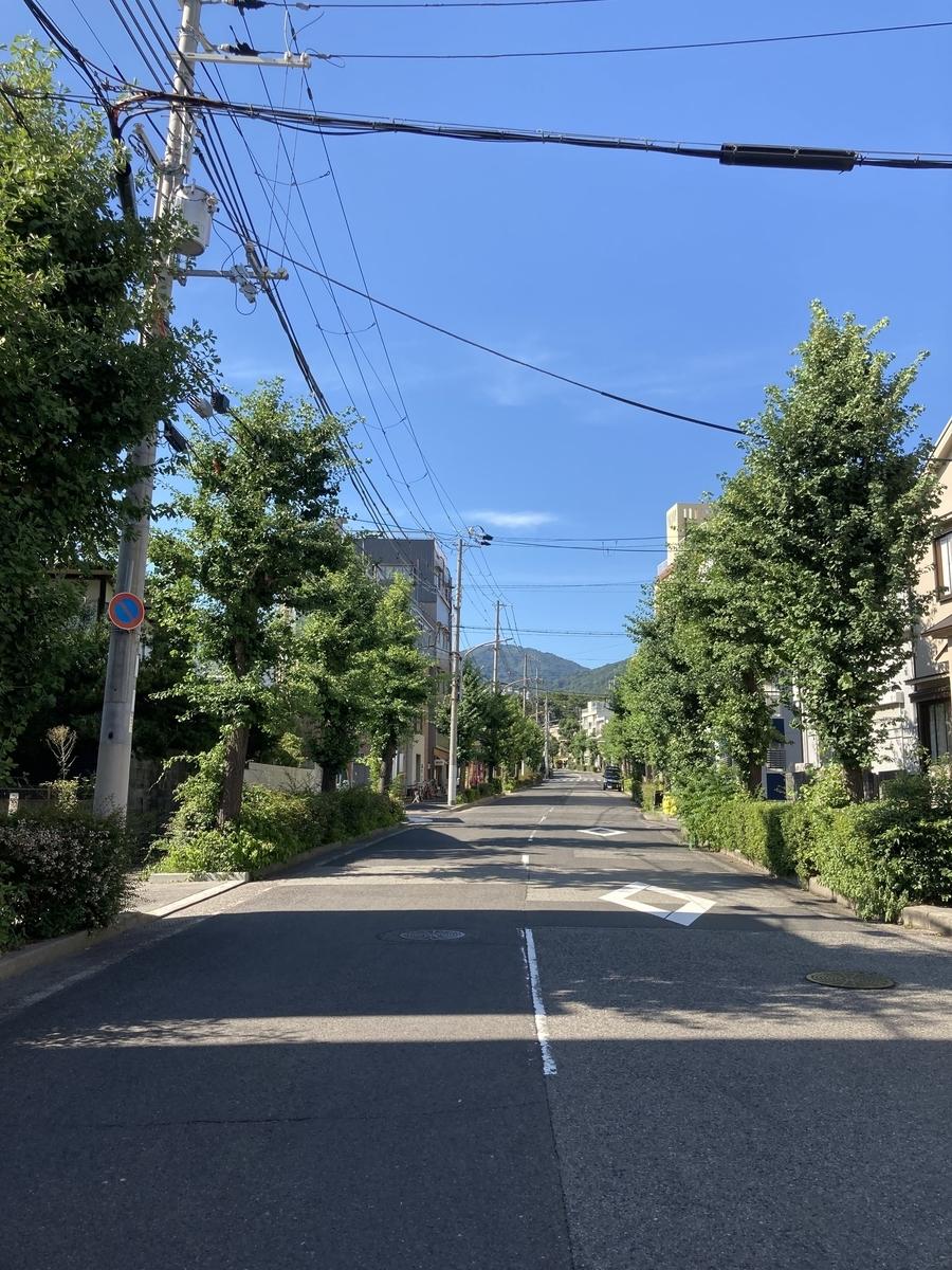 f:id:yasuyasi:20210721185006j:plain