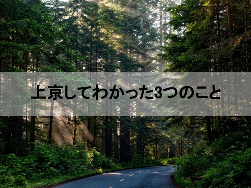 f:id:yatagawamasaki:20181103011506j:plain