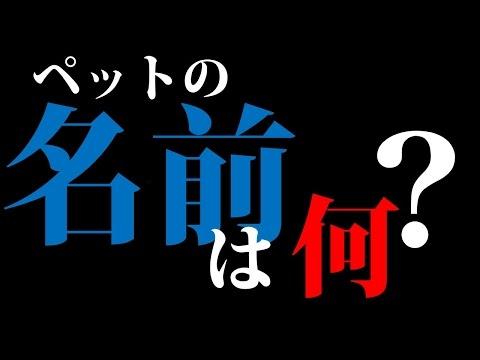 f:id:yatchae:20170411020023j:plain