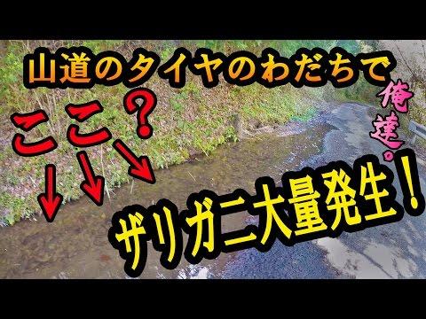 f:id:yatchae:20170509080012j:plain