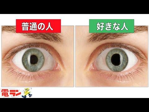 f:id:yatchae:20170513080016j:plain
