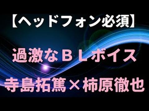 f:id:yatchae:20170601020018j:plain