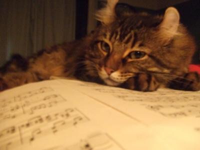 ルカと楽譜