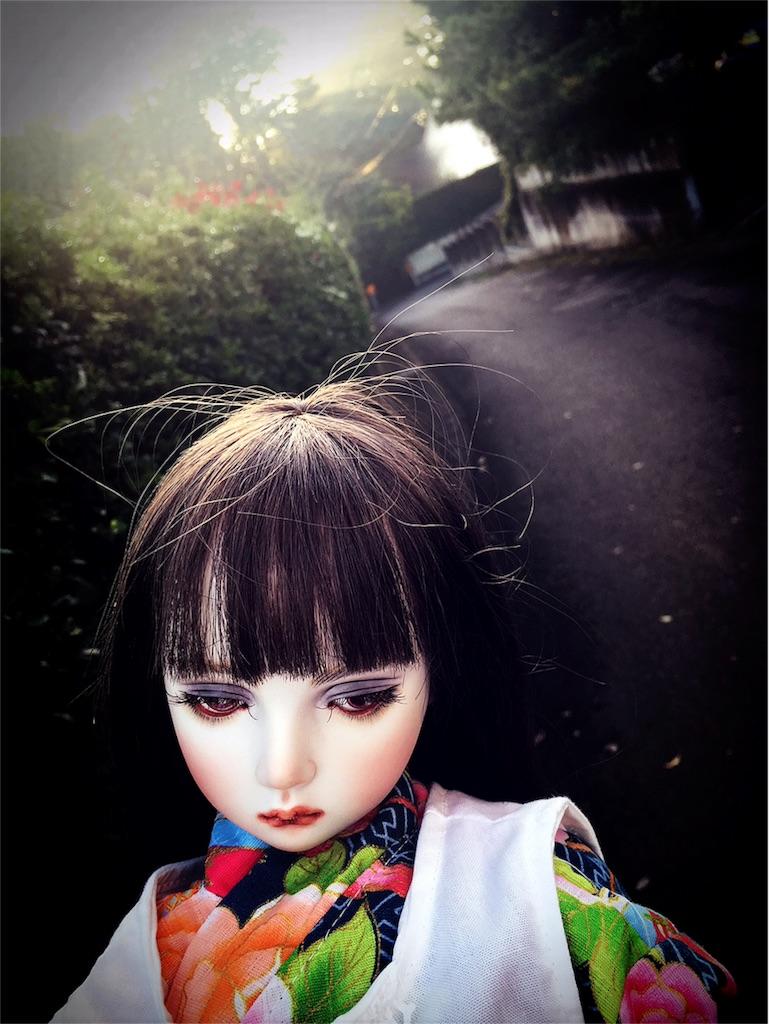 f:id:yatomuuu:20171018103459j:image