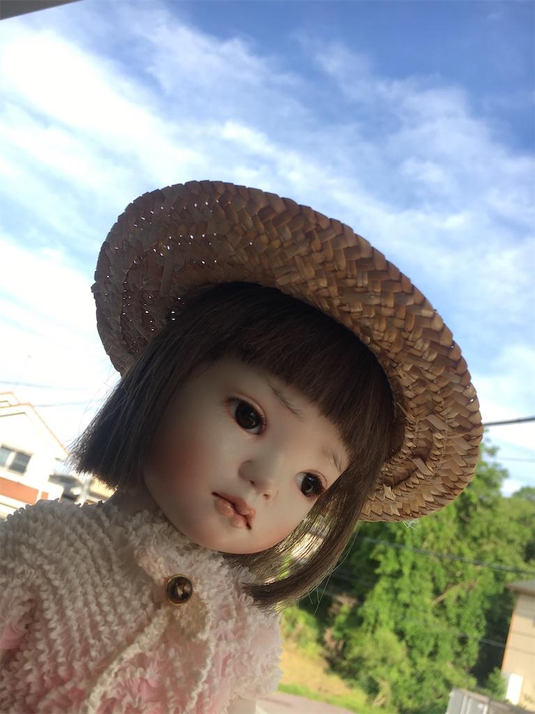 f:id:yatomuuu:20200610172211j:image
