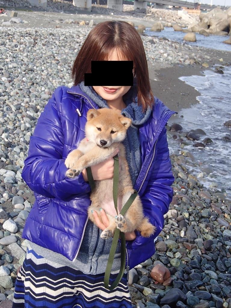 f:id:yatosyouta:20170711184126j:plain