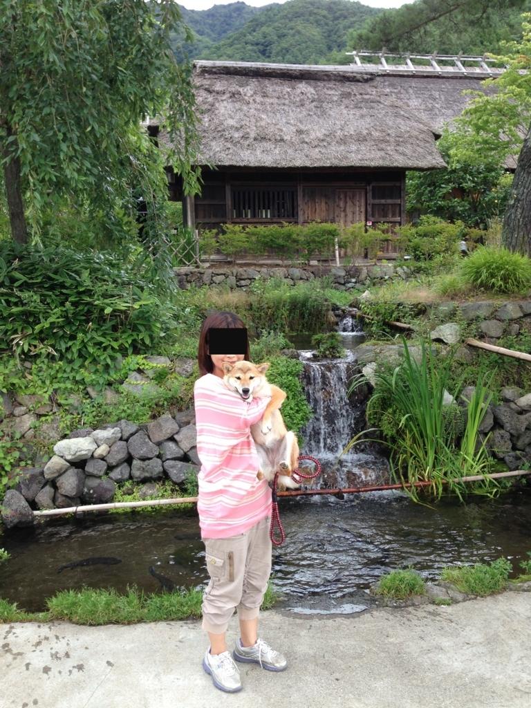 f:id:yatosyouta:20170801150153j:plain