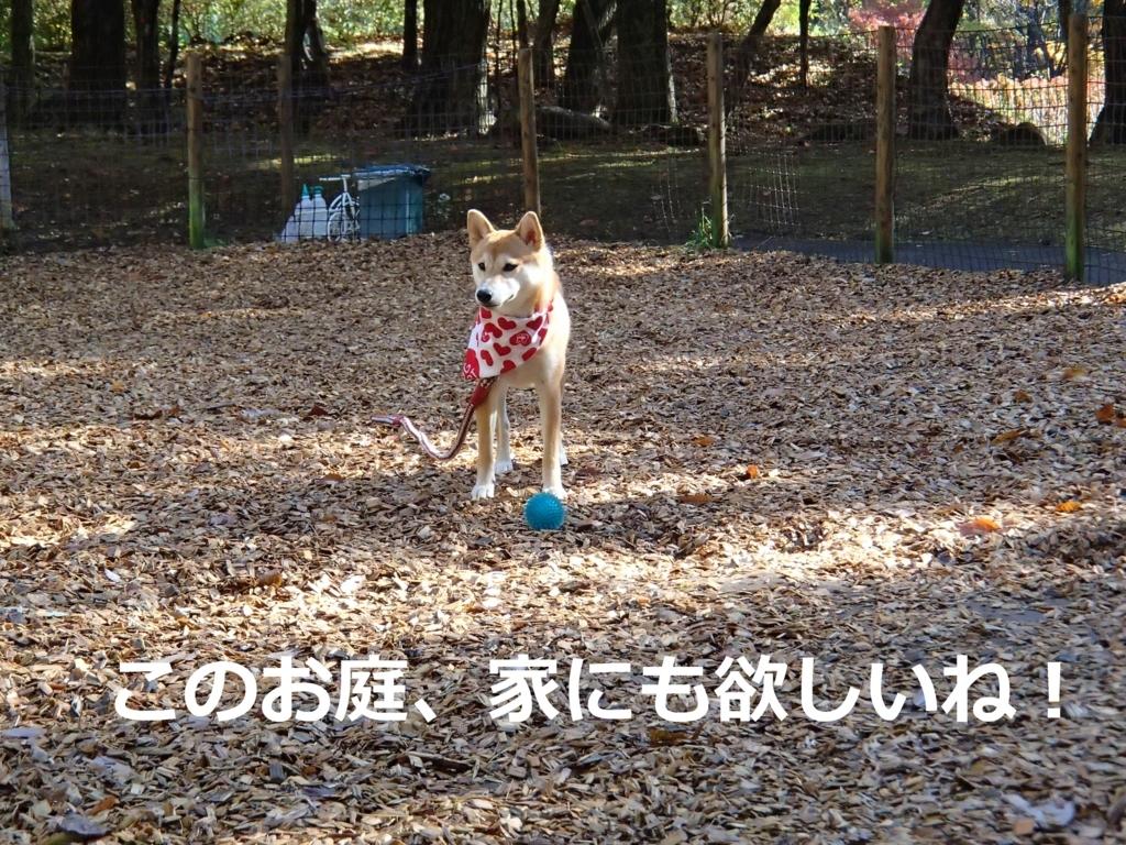 f:id:yatosyouta:20170807123115j:plain