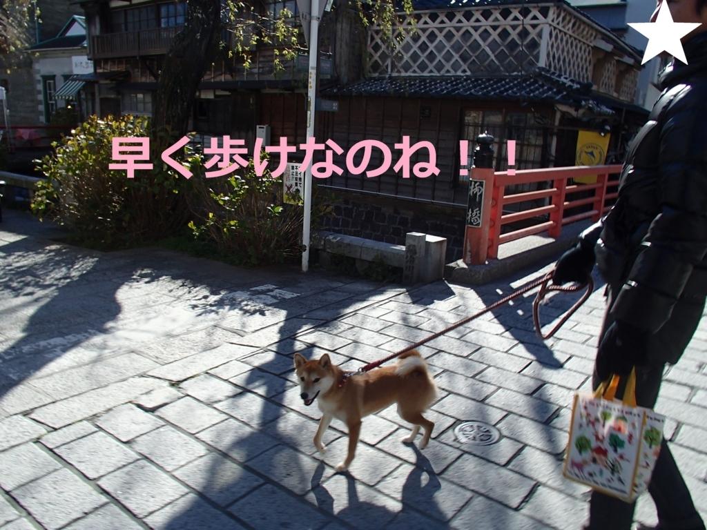 f:id:yatosyouta:20170809210249j:plain