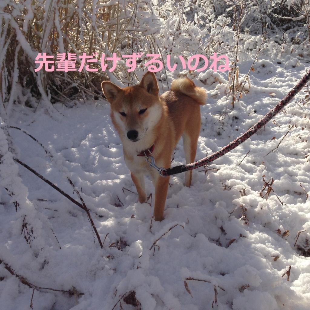 f:id:yatosyouta:20170811023154j:plain