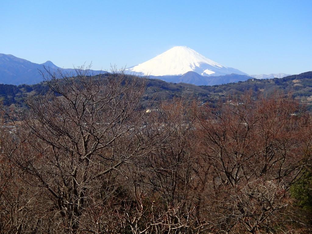f:id:yatosyouta:20170814131204j:plain