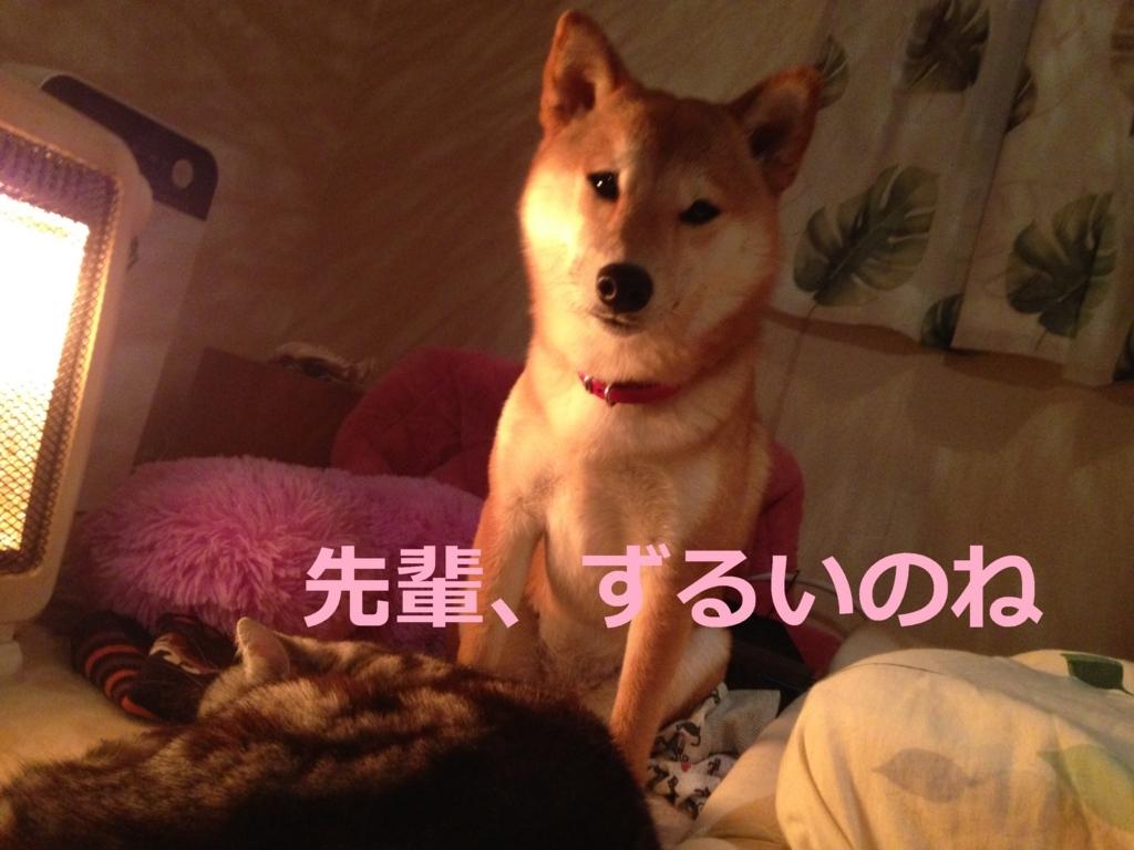 f:id:yatosyouta:20170815130902j:plain