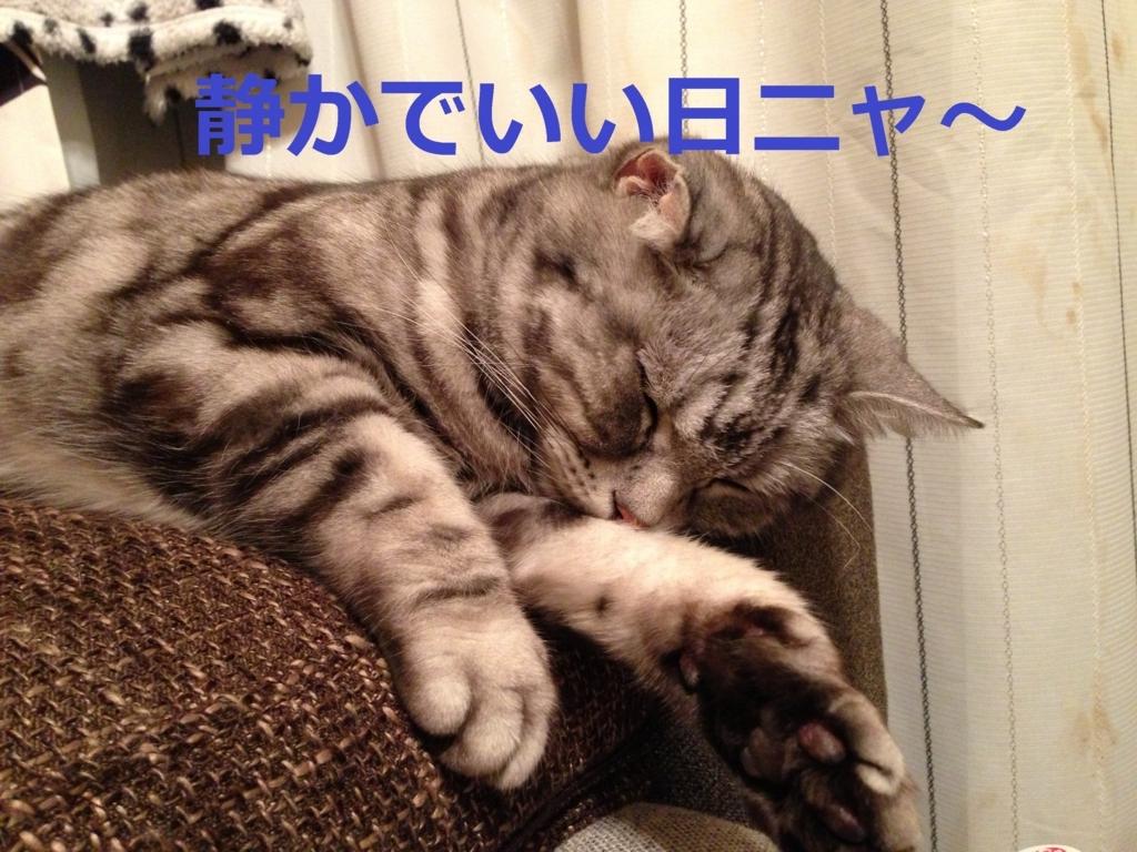 f:id:yatosyouta:20170816163016j:plain