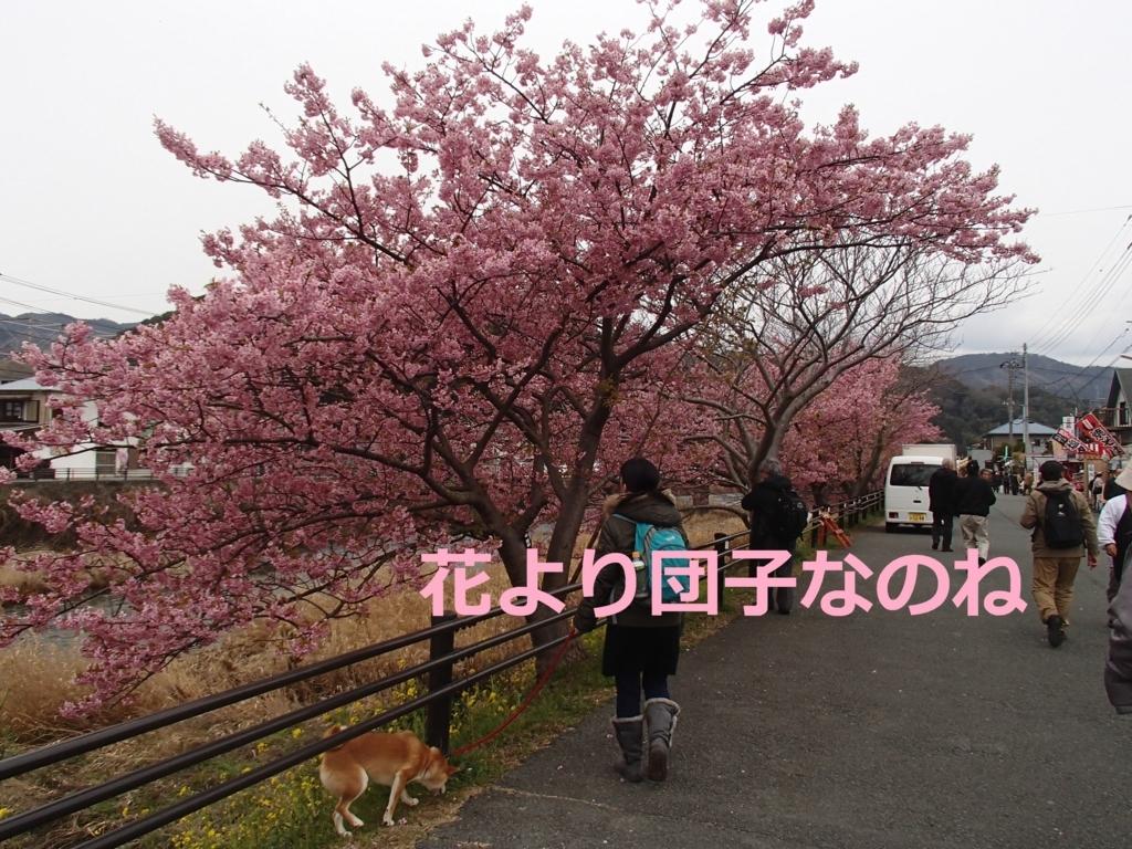 f:id:yatosyouta:20170816163421j:plain