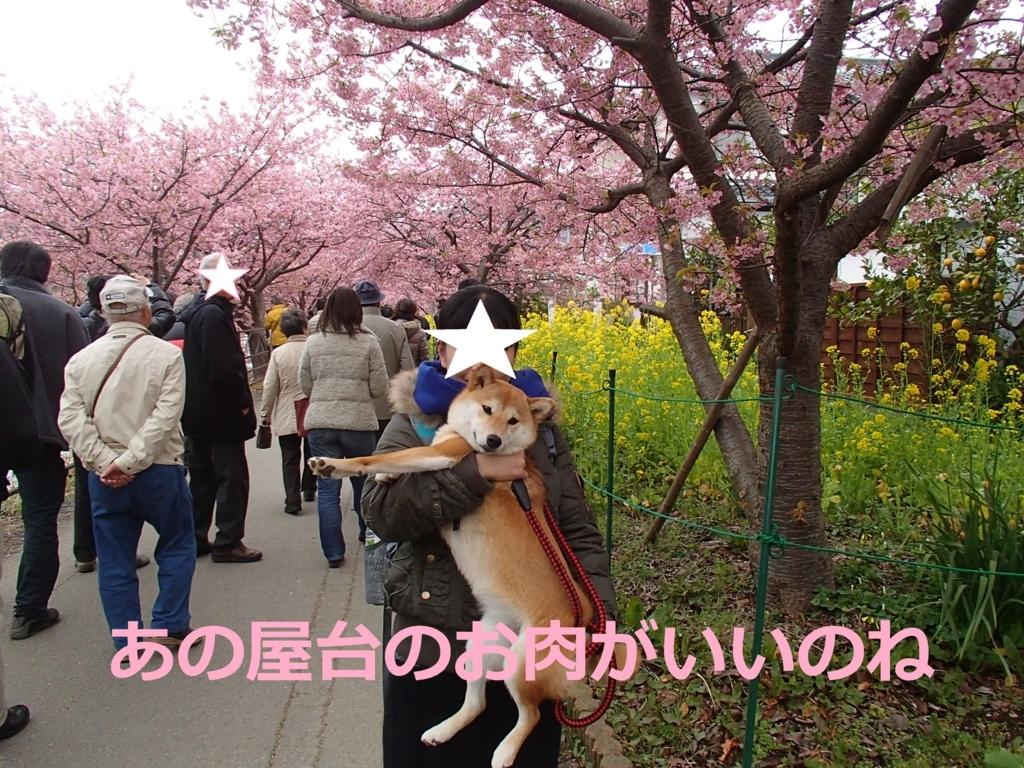f:id:yatosyouta:20170816163514j:plain