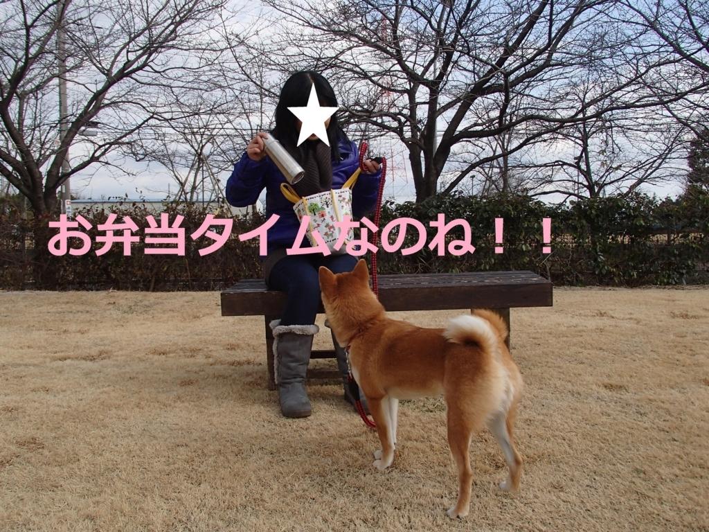 f:id:yatosyouta:20170817165037j:plain