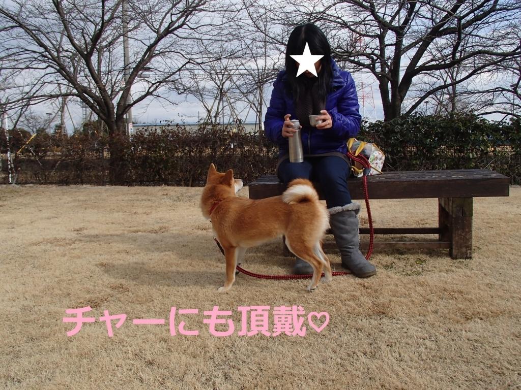 f:id:yatosyouta:20170817165241j:plain