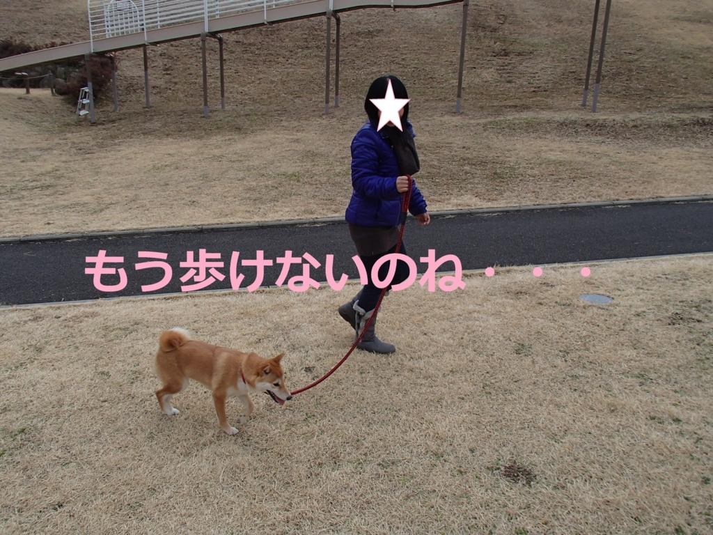 f:id:yatosyouta:20170817180222j:plain