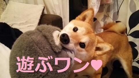 f:id:yatosyouta:20170818164639p:plain