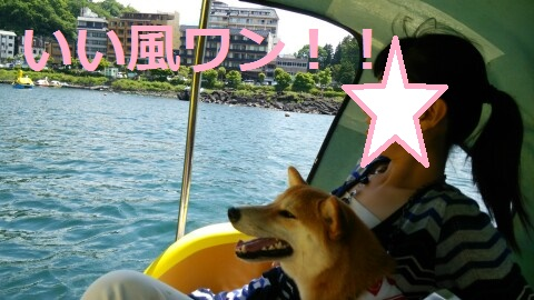 f:id:yatosyouta:20170818201618p:plain