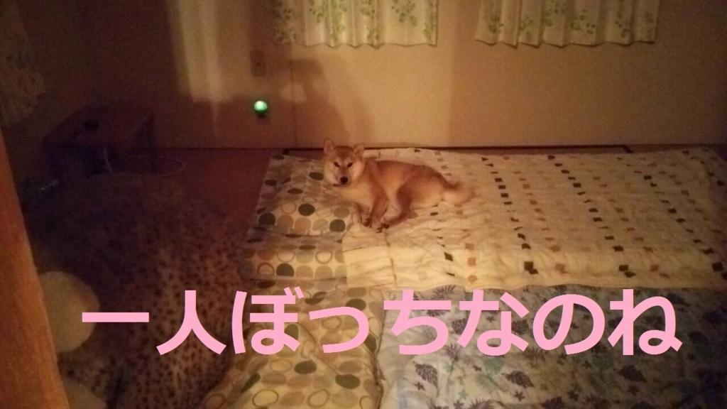f:id:yatosyouta:20170831121600j:plain