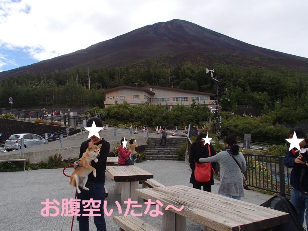 f:id:yatosyouta:20170902124825j:plain
