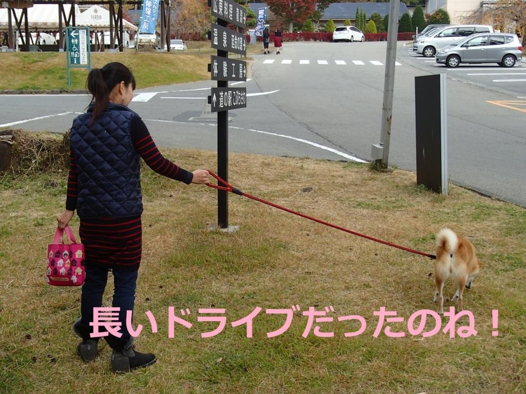 f:id:yatosyouta:20170903155336j:plain