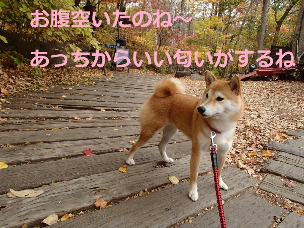 f:id:yatosyouta:20170903155955j:plain