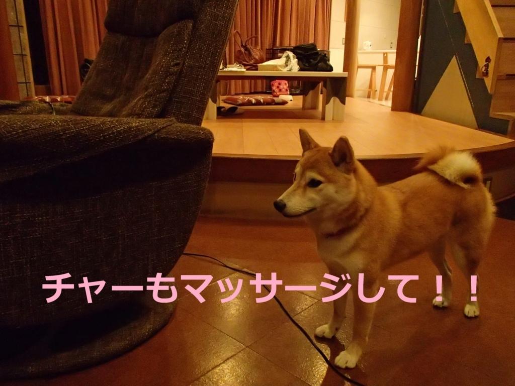 f:id:yatosyouta:20170903160036j:plain