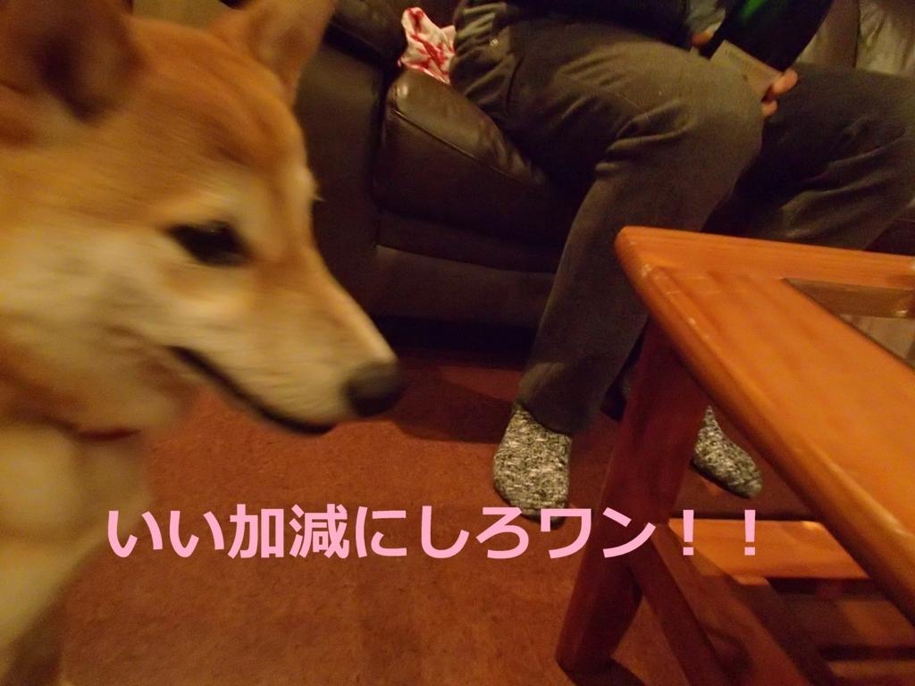 f:id:yatosyouta:20170903160106j:plain