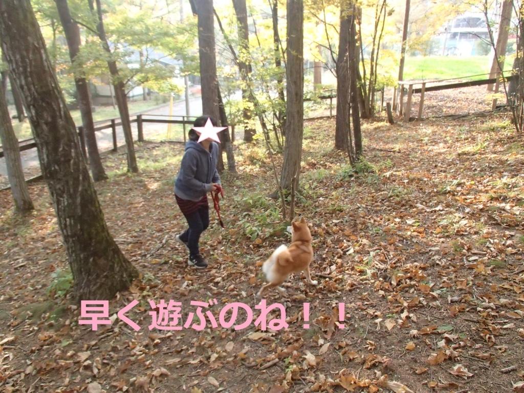 f:id:yatosyouta:20170903171330j:plain