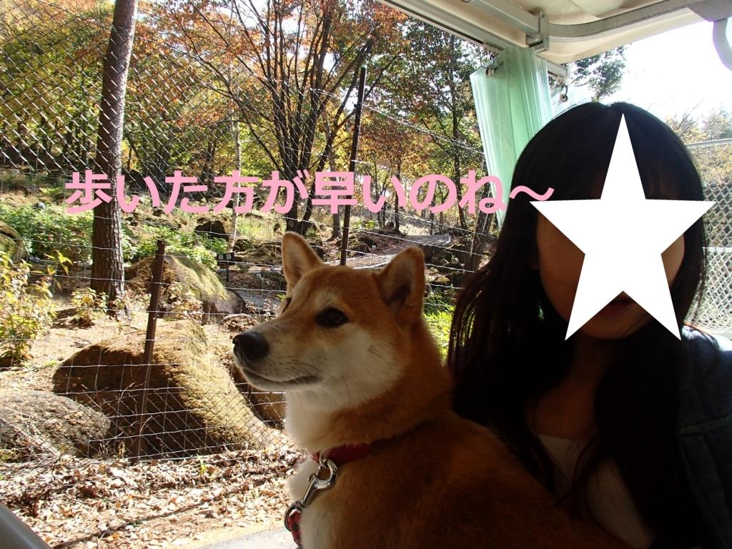f:id:yatosyouta:20170904153206j:plain