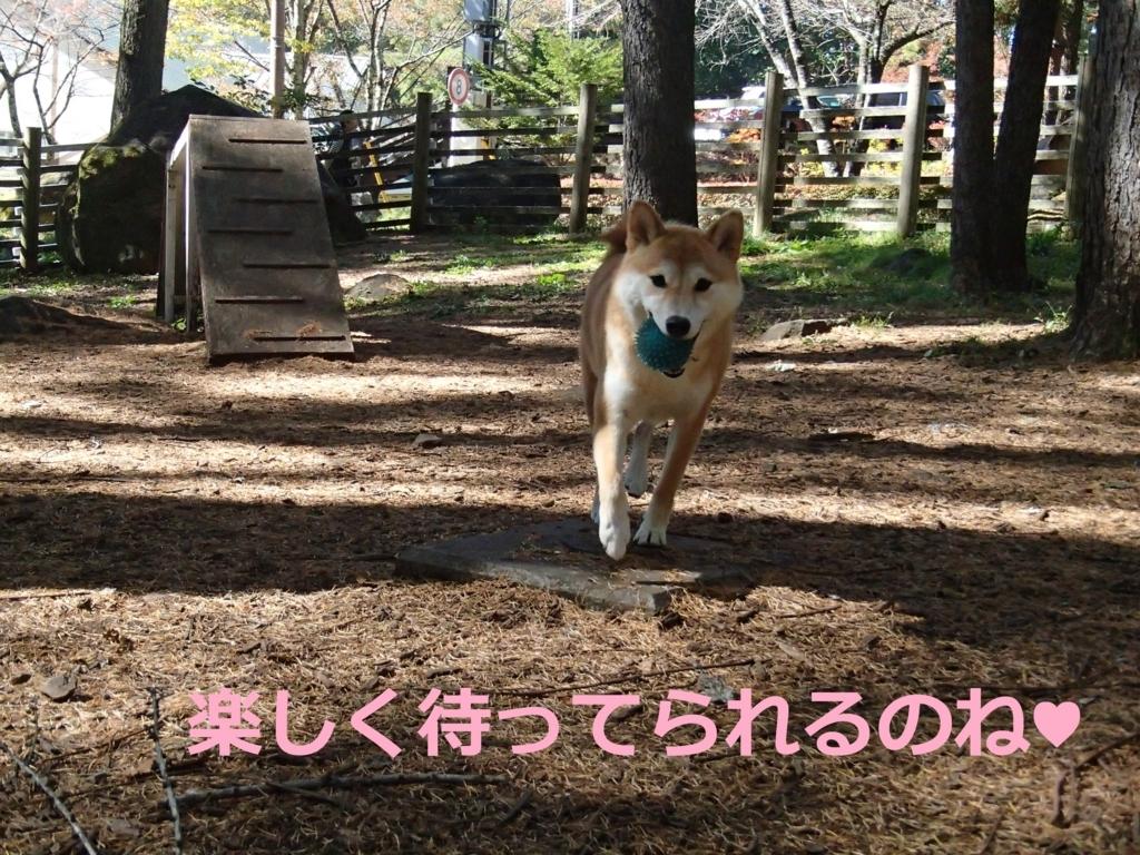 f:id:yatosyouta:20170904193825j:plain