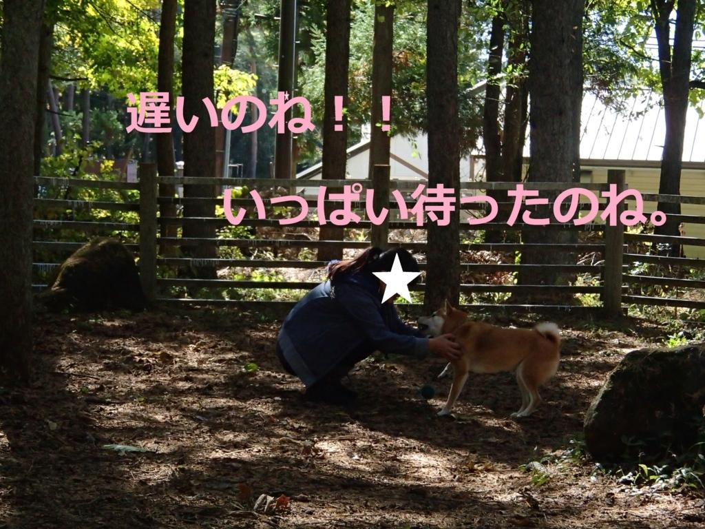 f:id:yatosyouta:20170904193903j:plain
