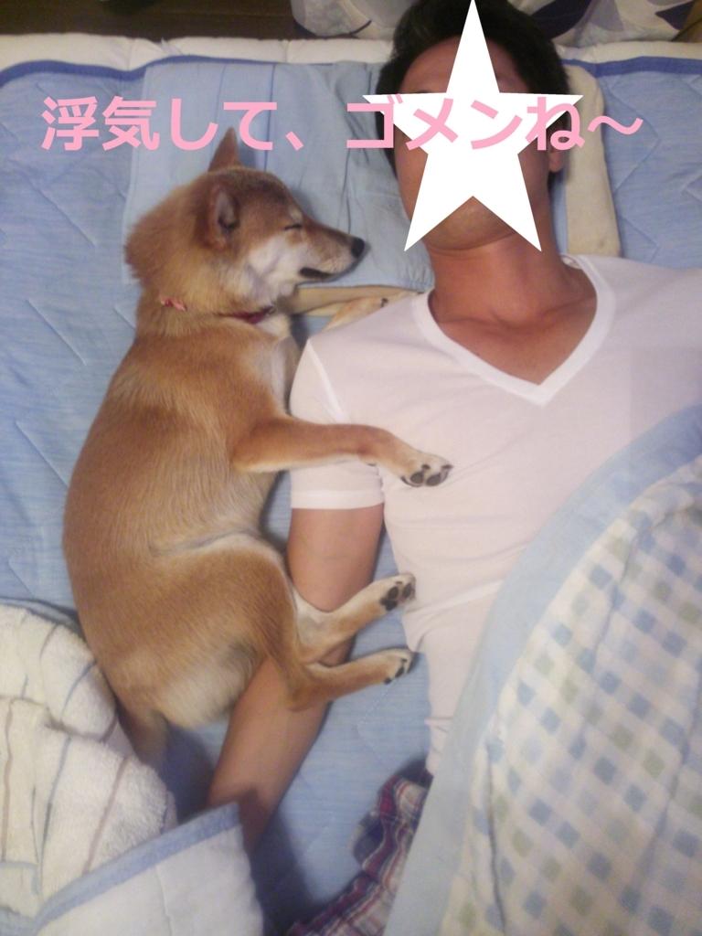 f:id:yatosyouta:20170905115223j:plain