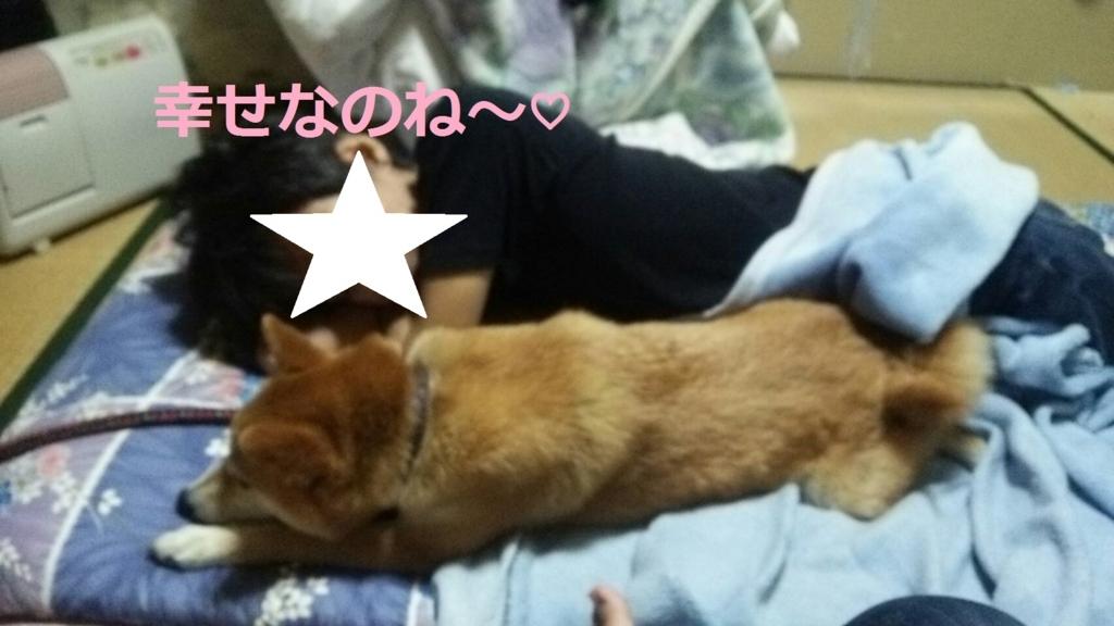 f:id:yatosyouta:20170905115248j:plain