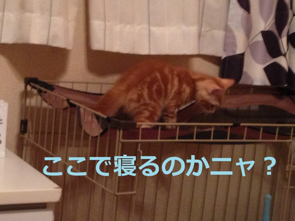 f:id:yatosyouta:20170907121949j:plain