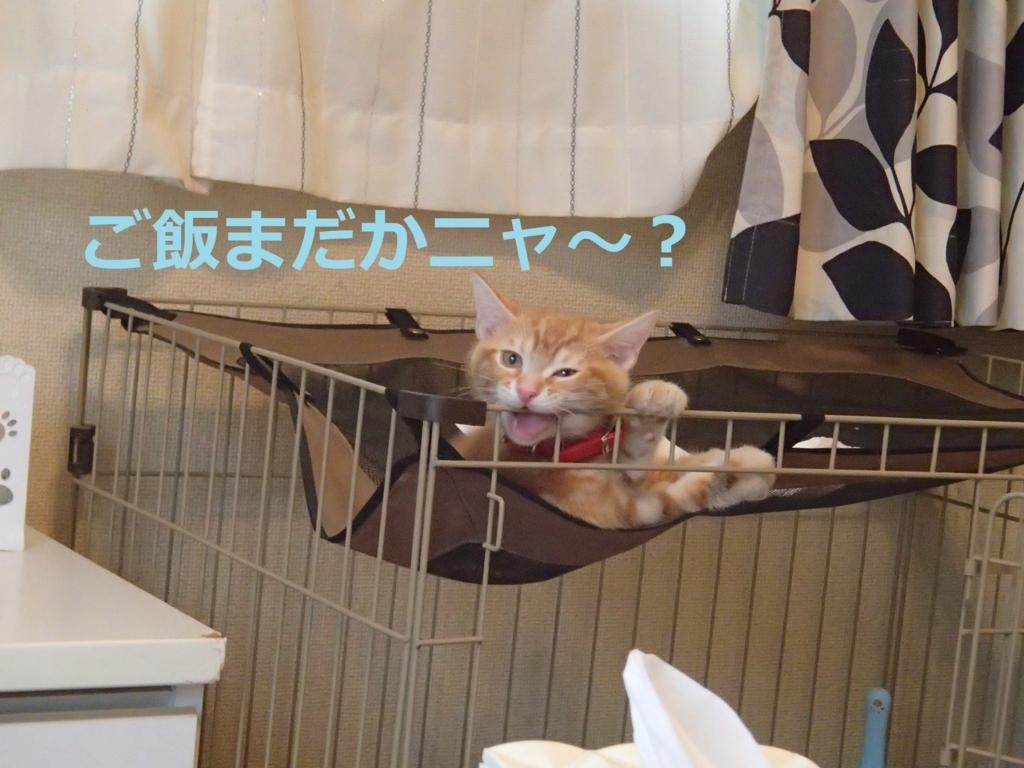f:id:yatosyouta:20170907122715j:plain