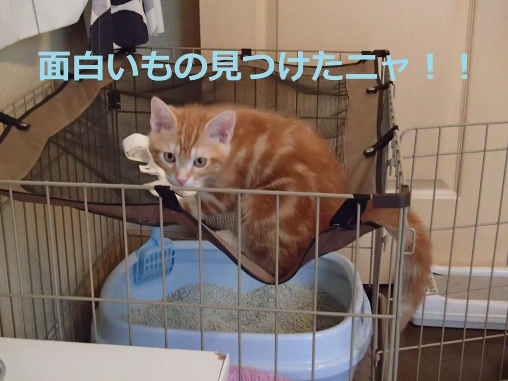 f:id:yatosyouta:20170907125953j:plain