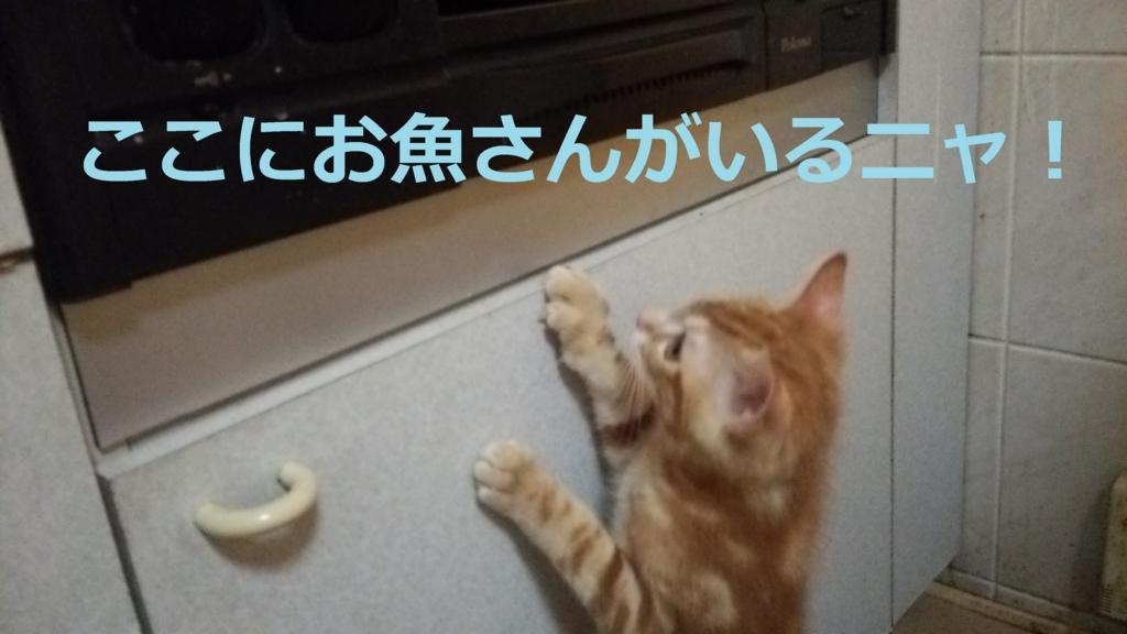 f:id:yatosyouta:20170912105659j:plain